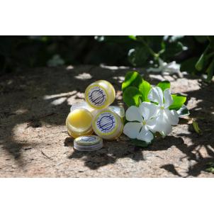 Lip Balm -Sunflower Kiss 10g